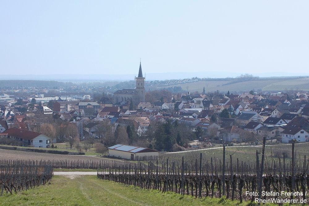 Oberrhein: Blick auf Bodenheim - Stefan Frerichs / RheinWanderer.de