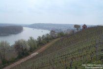 Oberrhein: Weinberghütte bei Nierstein - Stefan Frerichs / RheinWanderer.de