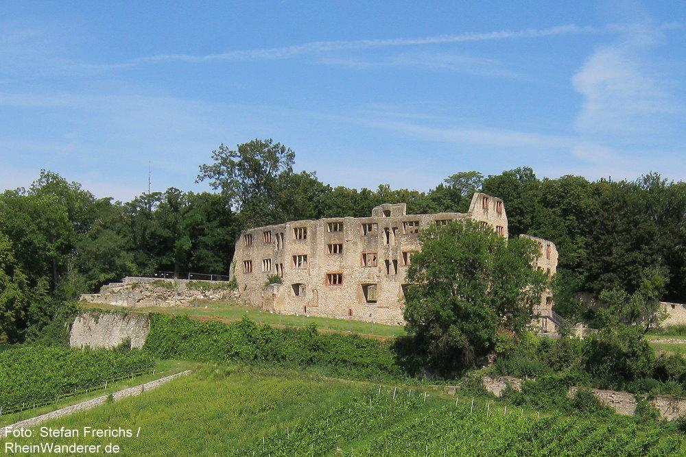 Oberrhein: Burgruine Landskrone bei Oppenheim - Stefan Frerichs / RheinWanderer.de