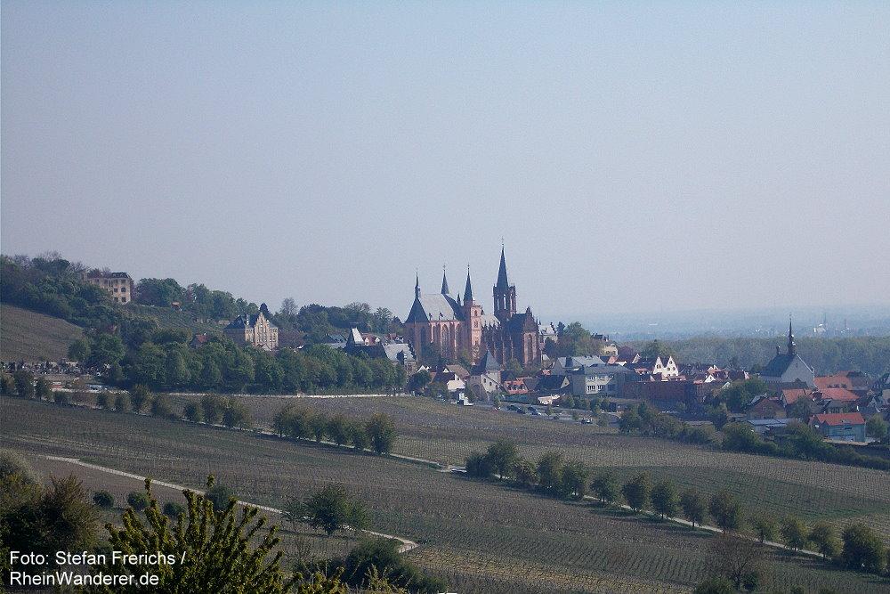 Oberrhein: Blick auf Oppenheim - Stefan Frerichs / RheinWanderer.de