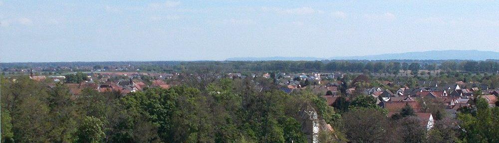 Oberrhein: Blick auf Alsheim mit Heidenturmkirche - Foto: Stefan Frerichs / RheinWanderer.de