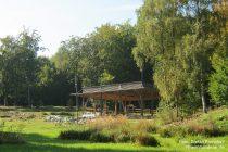 Mittelrhein: Ehemaliger römischer Gutshof (Villa Rustica) im Binger Wald - Foto: Stefan Frerichs / RheinWanderer.de