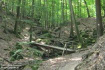 Mittelrhein: Steckeschlääferklamm im Binger Wald - Foto: Stefan Frerichs / RheinWanderer.de