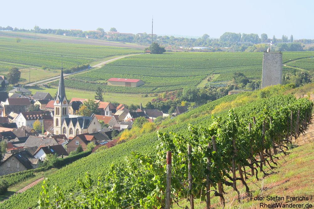Oberrhein: Blick auf Schwabsburg mit Burgruine - Foto: Stefan Frerichs / RheinWanderer.de