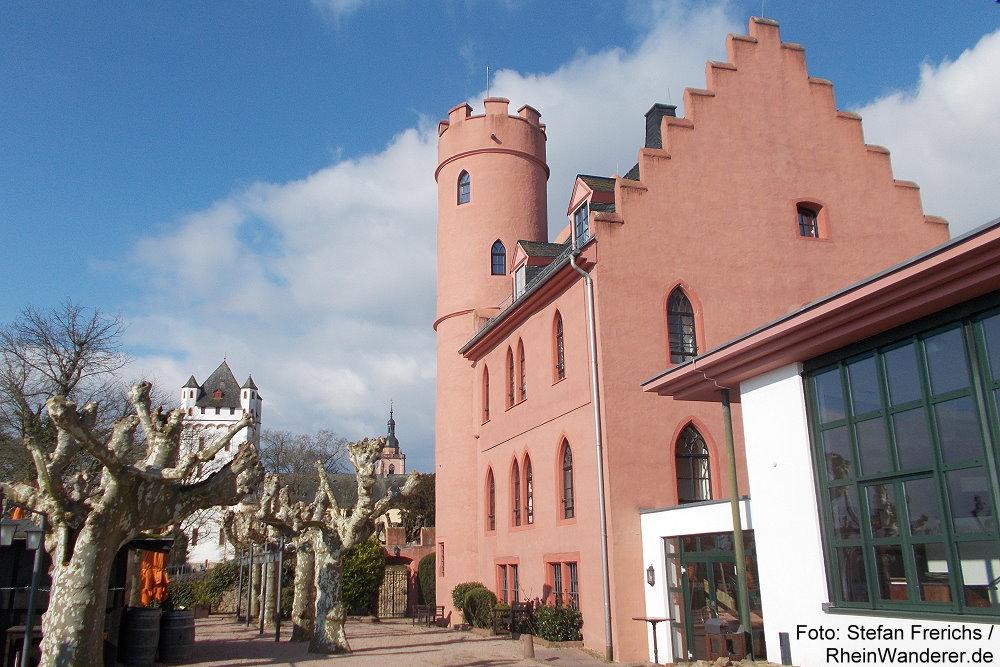 Burg Crass und Kurfürstliche Burg in Eltville - Foto: Stefan Frerichs / RheinWanderer.de