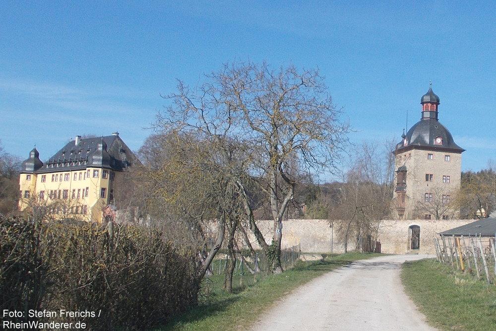 Inselrhein: Schloss Vollrads - Foto: Stefan Frerichs / RheinWanderer.de