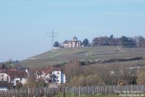 Inselrhein: Blick auf Schloss Johannisberg - Foto: Stefan Frerichs / RheinWanderer.de