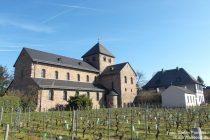 Inselrhein: Sankt-Aegidius-Basilika in Mittelheim - Foto: Stefan Frerichs / RheinWanderer.de
