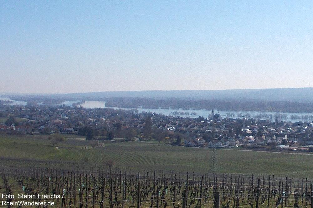 Inselrhein: Blick auf Oestrich-Winkel - Foto: Stefan Frerichs / RheinWanderer.de