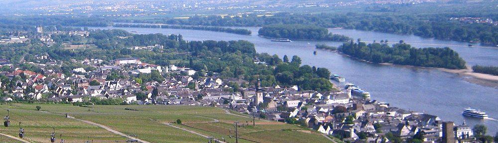 Inselrhein: Blick auf Rüdesheim - Foto: Stefan Frerichs / RheinWanderer.de