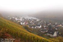Mosel: Blick auf Karden - Foto: Stefan Frerichs / RheinWanderer.de