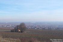 Pfälzerwald: Blick auf Heiligenkirche und Bockenheim an der Weinstraße - Foto: Stefan Frerichs / RheinWanderer.de