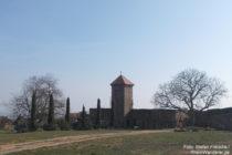 Pfälzerwald: Innenbereich von Burg Battenberg - Foto: Stefan Frerichs / RheinWanderer.de