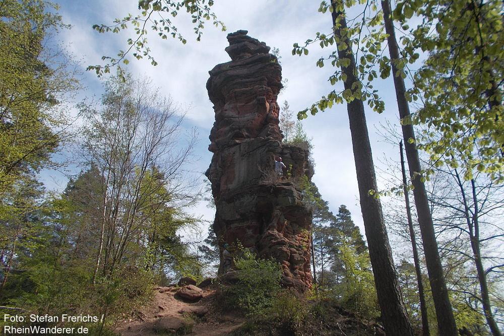 Pfälzerwald: Napoleonsfels bei Bruchweiler-Bärenbach - Foto: Stefan Frerichs / RheinWanderer.de