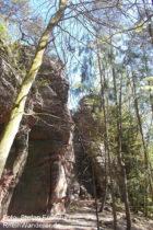 Pfälzerwald: Felsen des Schafstein-Massivs - Foto: Stefan Frerichs / RheinWanderer.de