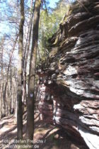 Pfälzerwald: Felswand der Rauhbergfelsen bei Bruchweiler-Bärenbach - Foto: Stefan Frerichs / RheinWanderer.de
