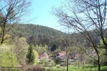Pfälzerwald: Blick auf Erfweiler - Foto: Stefan Frerichs / RheinWanderer.de