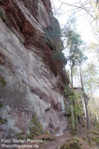 Pfälzerwald: Felswand der Dretschbergfelsen bei Bruchweiler-Bärenbach - Foto: Stefan Frerichs / RheinWanderer.de