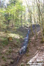 Pfälzerwald: Wasserfall am Waldbach - Foto: Stefan Frerichs / RheinWanderer.de