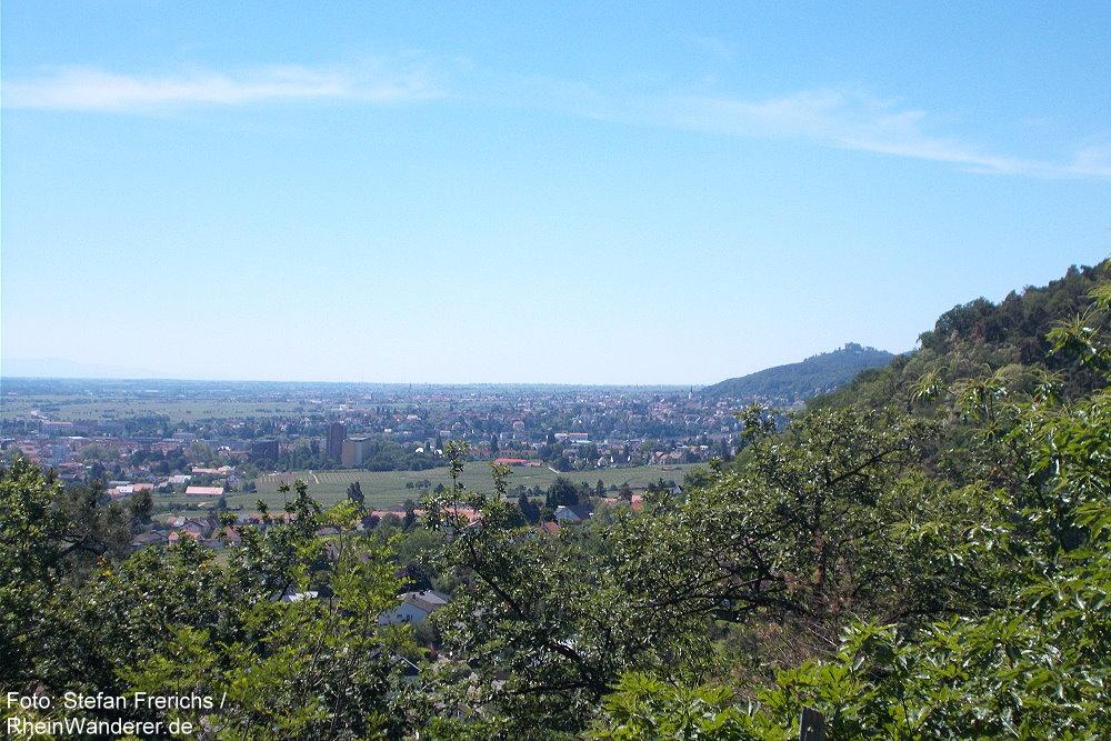 Pfälzerwald: Meerspinnblick Richtung Neustadt und Hambacher Schloss - Foto: Stefan Frerichs / RheinWanderer.de