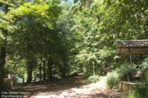 Pfälzerwald: Ludwigsruhe im Benjental - Foto: Stefan Frerichs / RheinWanderer.de