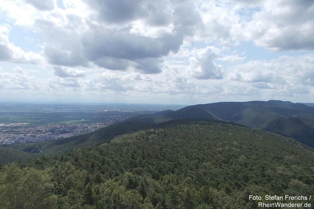 Pfälzerwald: Blick vom Weinbiet nach Süden - Foto: Stefan Frerichs / RheinWanderer.de