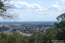 Pfälzerwald: Scheffelwarte-Blick auf Neustadt - Foto: Stefan Frerichs / RheinWanderer.de