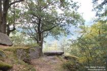 Pfälzerwald: Aussichtspunkt Zigeunerfelsen - Foto: Stefan Frerichs / RheinWanderer.de
