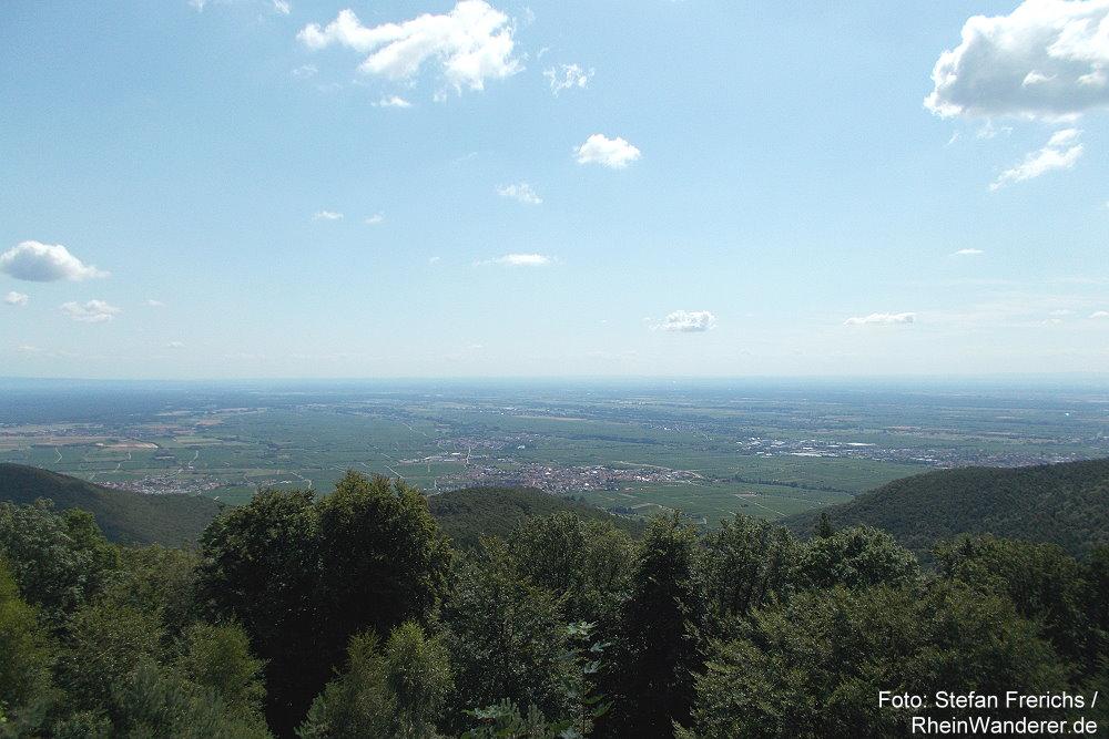 Pfälzerwald: Kalmit-Blick auf Oberrheinebene - Foto: Stefan Frerichs / RheinWanderer.de