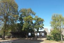 Odenwald: Innenhof von Schloss Alsbach - Foto: Stefan Frerichs / RheinWanderer.de
