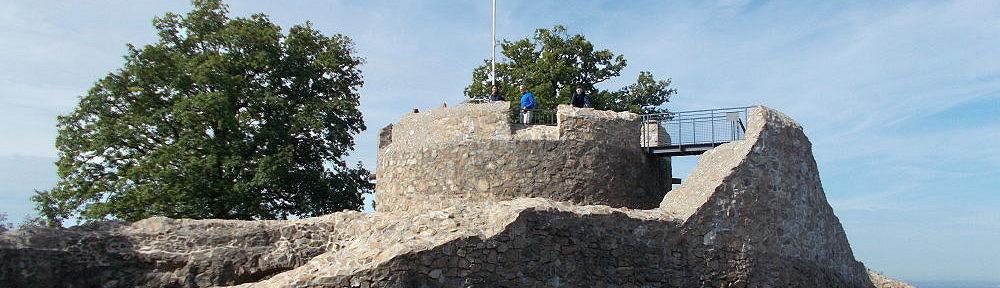 Odenwald: Burgruine Tannenberg von Osten - Foto: Stefan Frerichs / RheinWanderer.de
