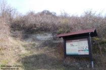 Inselrhein: Bodenprofil Kalktertiär am geoökologischen Lehrpfad - Foto: Stefan Frerichs / RheinWanderer.de