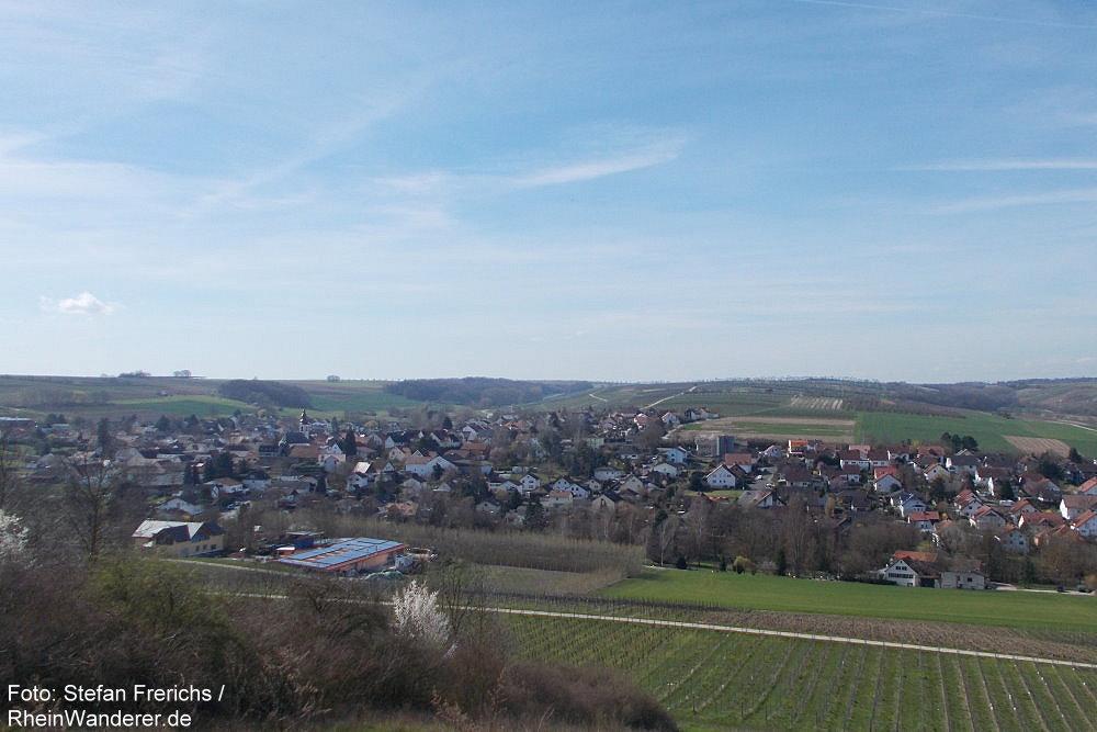 Inselrhein: Blick auf Appenheim - Foto: Stefan Frerichs / RheinWanderer.de