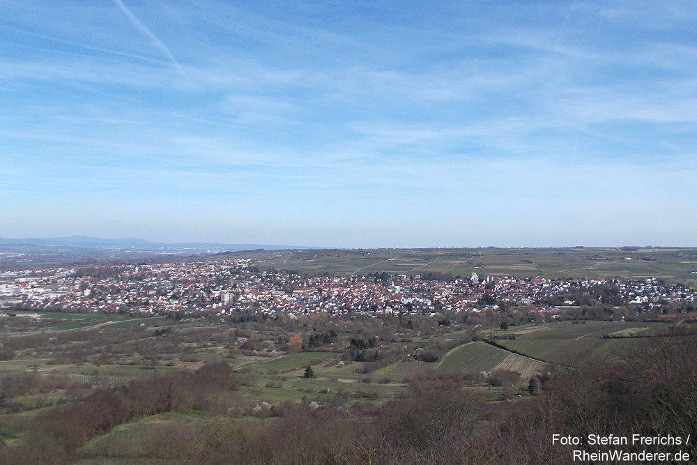 Inselrhein: Blick vom Bismarckturm auf Ingelheim - Foto: Stefan Frerichs / RheinWanderer.de