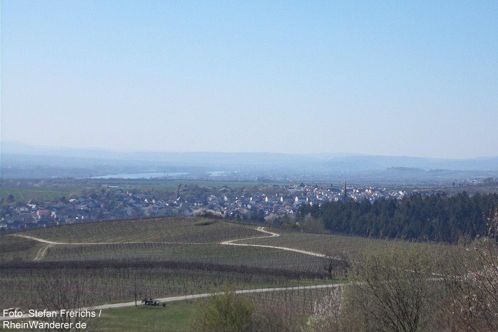 Inselrhein: Blick von der Bubenhäuser Höhe rheinabwärts auf Kiedrich - Foto: Stefan Frerichs / RheinWanderer.de