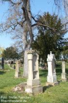Inselrhein: Friedhof von Bubenheim - Foto: Stefan Frerichs / RheinWanderer.de