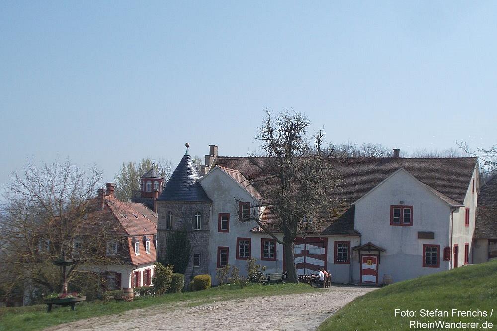 Inselrhein: Schloss Westerhaus von der Bergseite - Foto: Stefan Frerichs / RheinWanderer.de