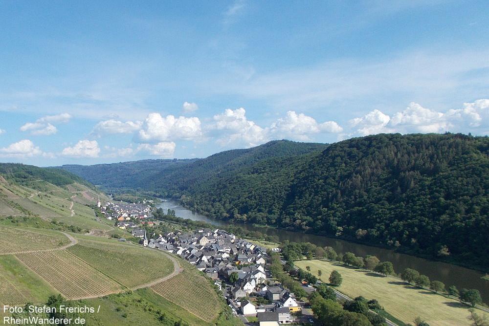 Mosel: Blick auf Ediger-Eller - Foto: Stefan Frerichs / RheinWanderer.de