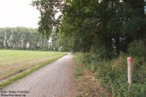 Niederrhein: Wanderweg vor Haus Bürgel - Foto: Stefan Frerichs / RheinWanderer.de