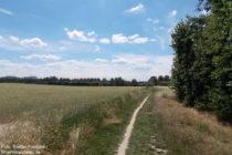 Niederrhein: Neanderlandsteig vor Monheim - Foto: Stefan Frerichs / RheinWanderer.de
