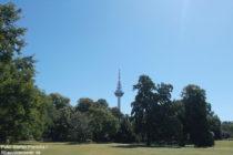 Neckar: Blick vom Luisenpark auf den Fernmeldeturm Mannheim - Foto: Stefan Frerichs / RheinWanderer.de
