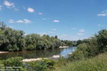 Neckar: Blick ins Naturschutzgebiet Altneckarschleife Neckarplatten - Foto: Stefan Frerichs / RheinWanderer.de