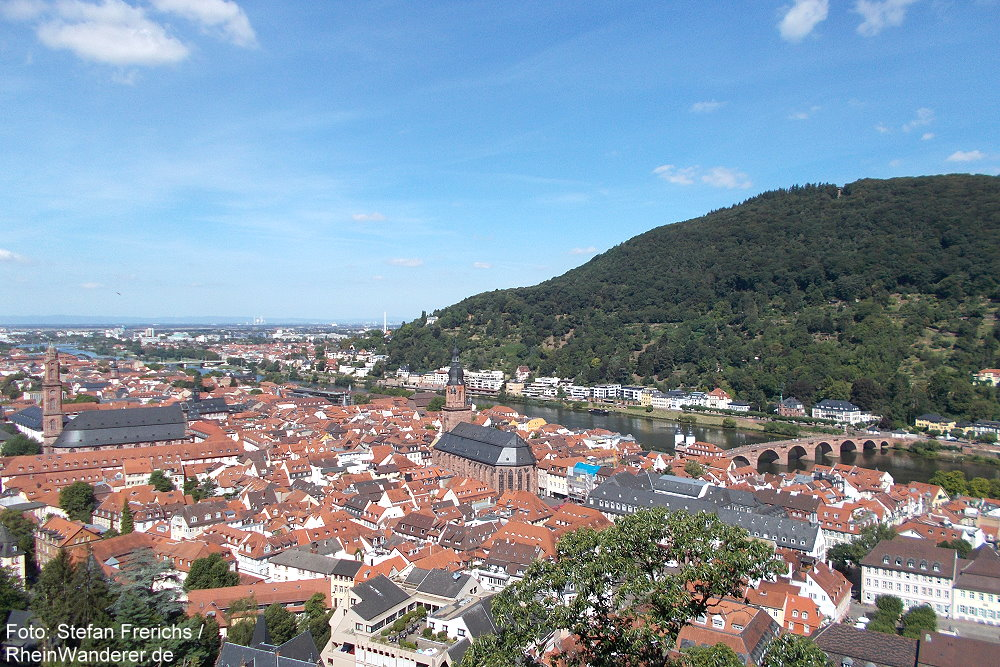 Neckar: Blick auf die Altstadt von Heidelberg - Foto: Stefan Frerichs / RheinWanderer.de