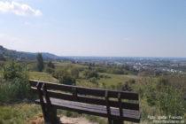 Odenwald: Blick über Zwingenberger Weinberge auf Auerbach - Foto: Stefan Frerichs / RheinWanderer.de