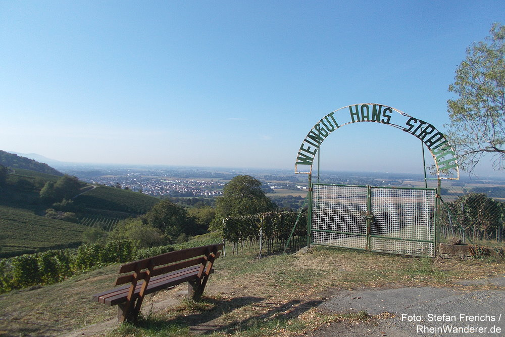 Odenwald: Blick auf die Weinlage Heppenheimer Eckweg - Foto: Stefan Frerichs / RheinWanderer.de