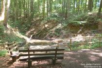 Odenwald: Amphibientümpel an der Sparerrast - Foto: Stefan Frerichs / RheinWanderer.de