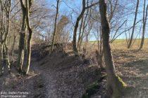Mosel: Wanderweg vor dem Burgenblick - Foto: Stefan Frerichs / RheinWanderer.de