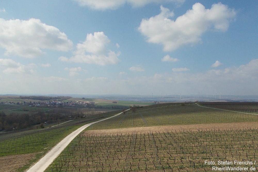Inselrhein: Blick vom Burgunderturm nach Westen - Foto: Stefan Frerichs / RheinWanderer.de