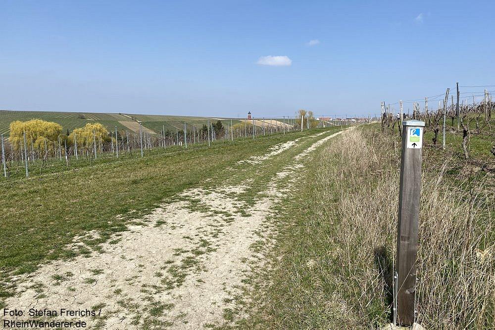 Inselrhein: Wanderweg mit Blick auf Burgunderturm - Foto: Stefan Frerichs / RheinWanderer.de