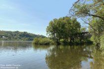 Ahr: Mündung der Ahr in den Rhein - Foto: Stefan Frerichs / RheinWanderer.de